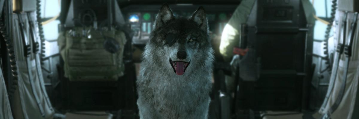 ¿Qué perro de videojuego sería tu fiel acompañante?